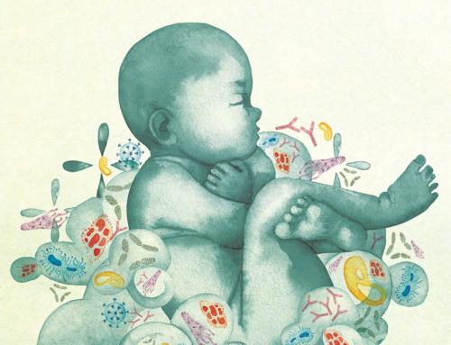 A alimentação na infância poderá modificar a longo prazo a microbiota e ter impacto na saúde muito mais tarde.